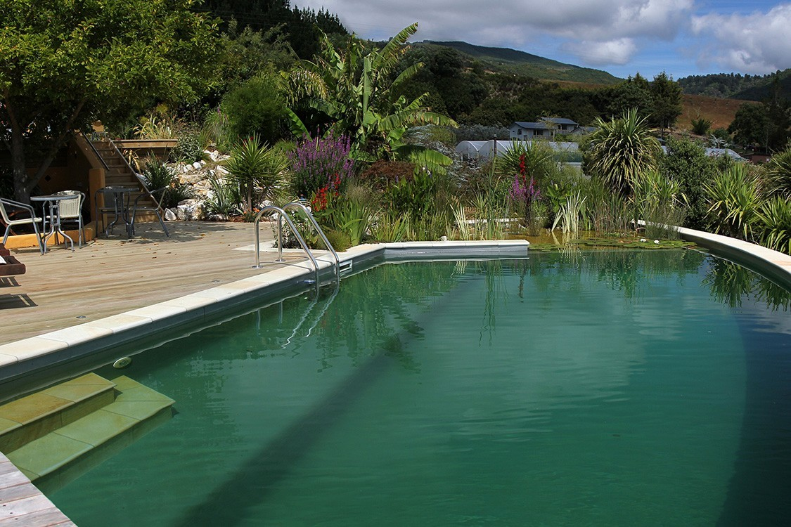natural pool in new zealand with stunning view