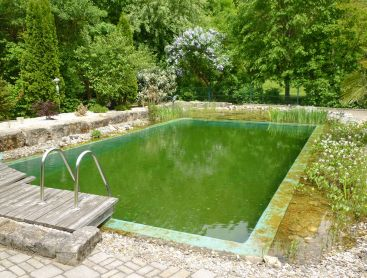 bio pool conversion in germany