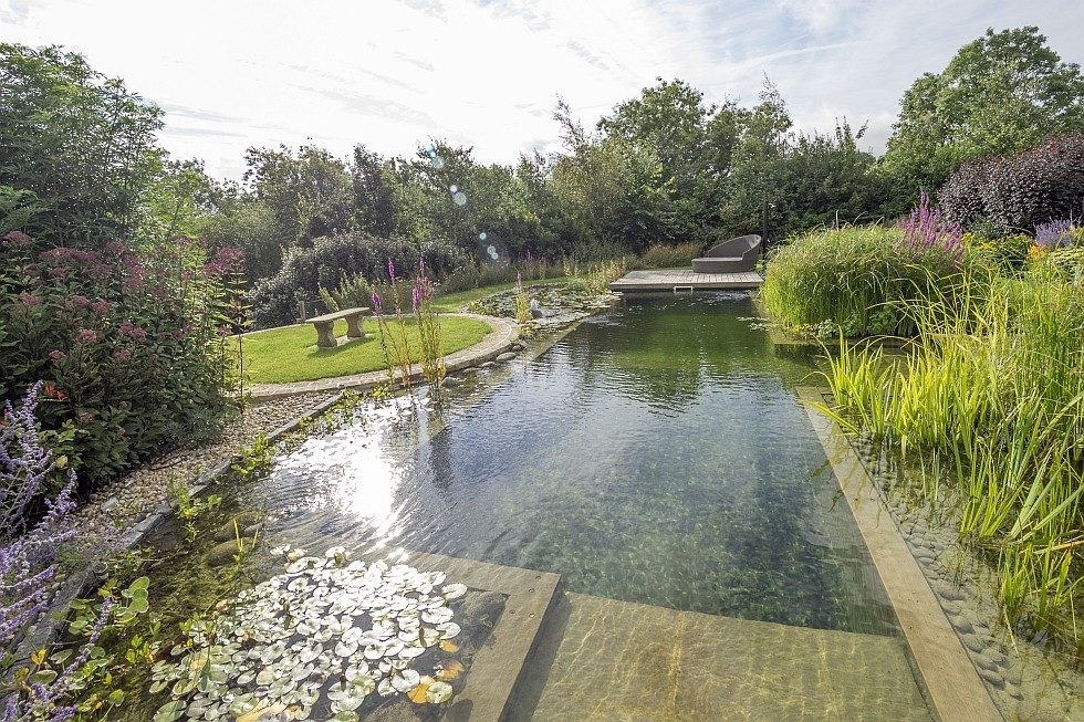 natural pool renovation with components of BIOTOP