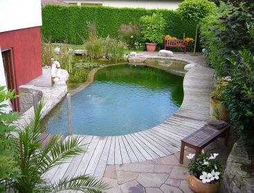 natural pool in Germany on a small space
