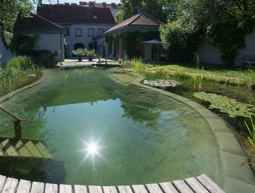 natural pool in the middle of vienna