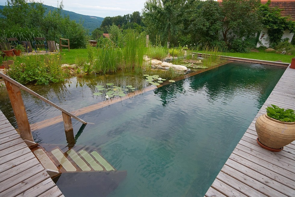 natural pool with corner elements
