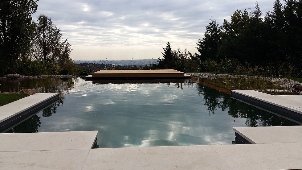 Swimming pool conversion to natural pool prevents demolition